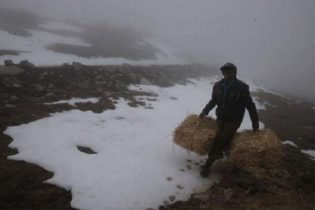 Temperatura descenderá hasta 15 grados bajo cero en Puno, Tacna y Moquegua