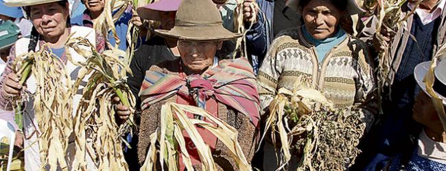 REGIONAL:Darán ayuda a siete provincias de Cusco afectadas por sequía