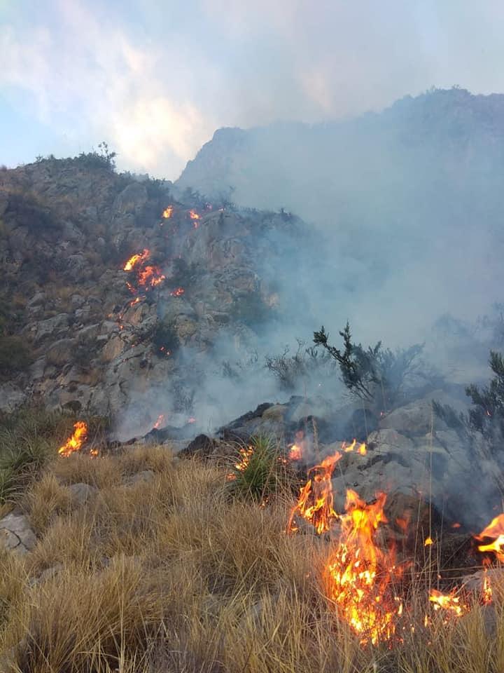 COLQUEMARCA:Incendio ocasiona muerte de 3 ovinos cerca al centro arqueológico de Urubamba  Colquemarca