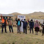 Entregan 215 ovinos para potenciar la actividad pecuaria en la comunidad de Casa Blanca